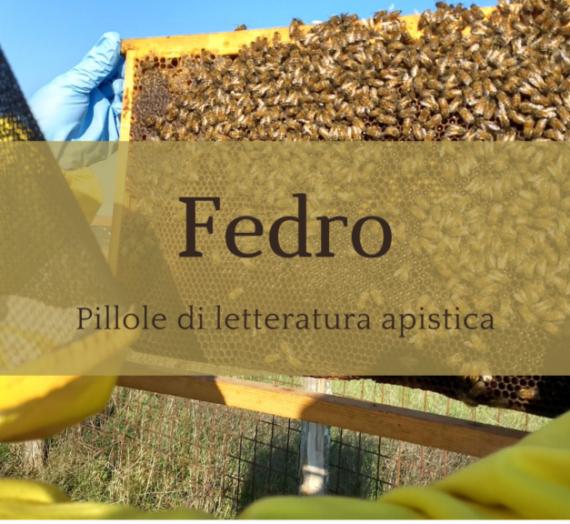Le api e i fuchi in tribunale – Fedro