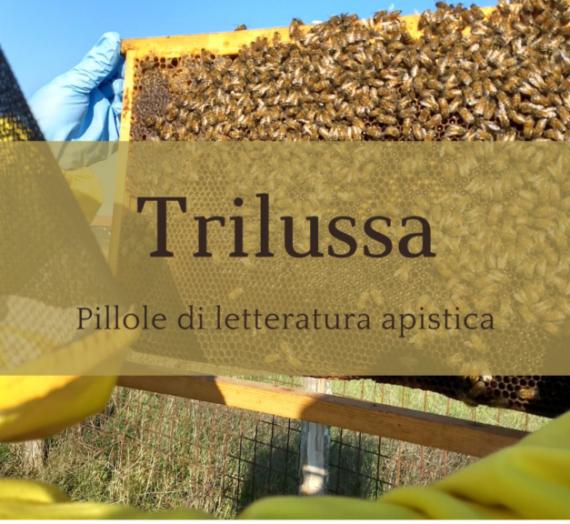Trilussa e le api