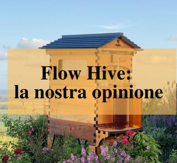 Flow Hive è una buona invenzione?