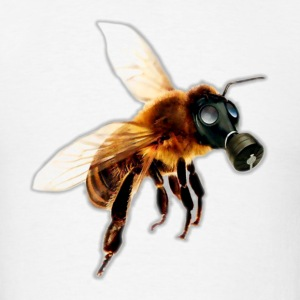 Come respirano le api?