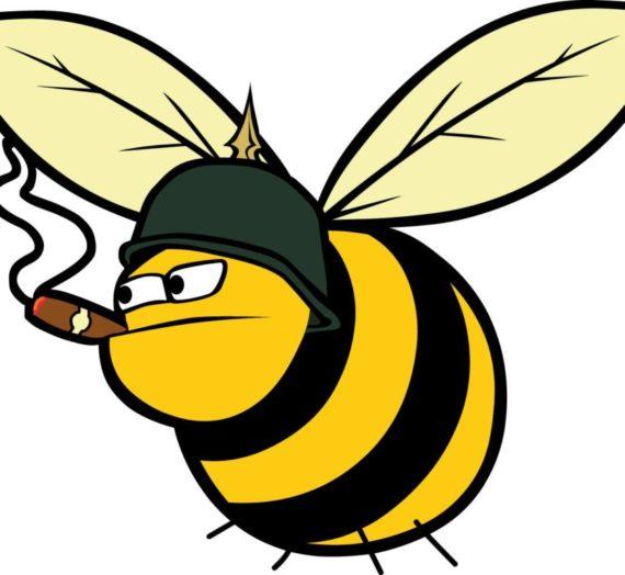 Le api sono pericolose?
