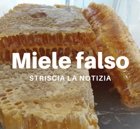 Miele falso – Striscia la notizia