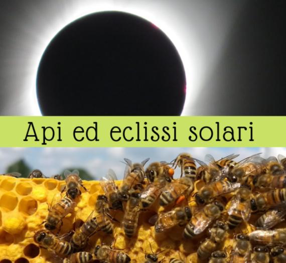 Cosa fanno le api durante un'eclissi solare?