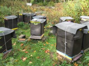 <em>Un modo per aiutare le api a superare l'inverno in climi freddi è quello di applicare del materiale isolante. Foto tratta dal blog Brookfield Farm Bees &amp; Honey.</em>
