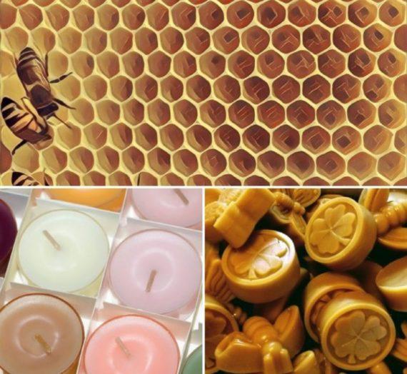 Cera d'api e paraffina: conclusioni