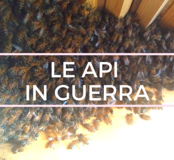 Le api in guerra