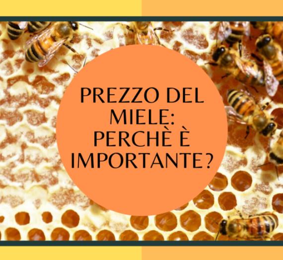 Prezzo del miele: perché è importante?