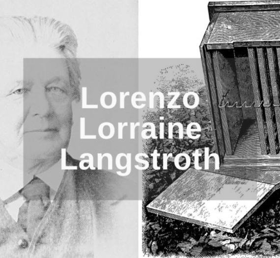 Lorenzo Lorraine Langstroth